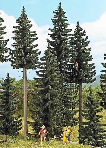 Busch loof- of dennenbomen kopen?