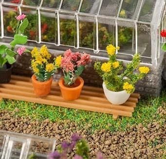 Struiken & bloemen van Faller kopen?
