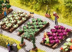 Tuin & Planten